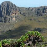 Climbing Mountain Elgon in Uganda